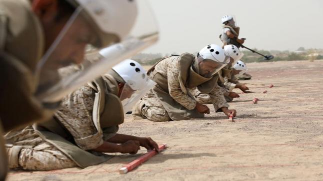 مسام: طهرنا 25 مليون متر مربع أراضي يمنية من الألغام